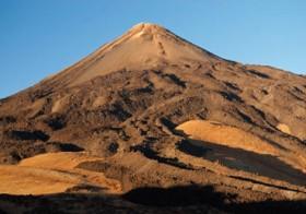 Flora y fauna del cono del Teide