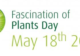 Día Internacional de la Fascinación por las Plantas.