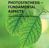 Advances in Photosynthesis – Fundamental Aspects
