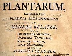 Cómo nombrar a las plantas. Nomenclatura botánica.